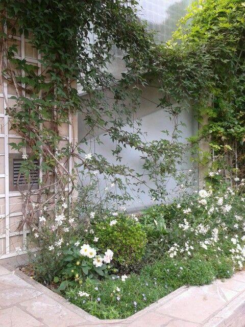 gardens przydomowe ogrodkiPrzydomow Ogrodki, Działkow Www Ogrodki Eu