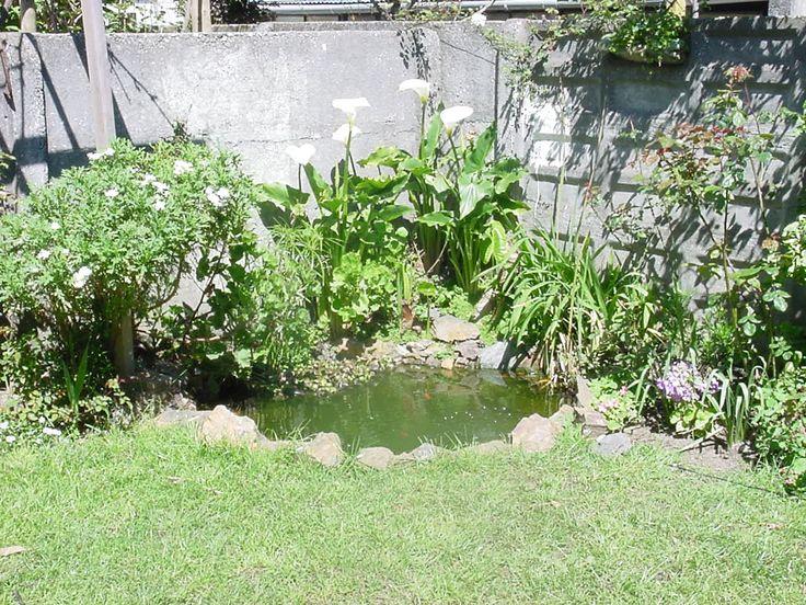 Mejores 52 im genes de lindos jardines en pinterest for Lindos jardines pequenos
