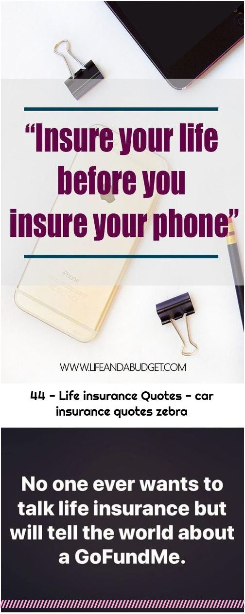 44 - Life insurance Quotes - car insurance quotes zebra in ...