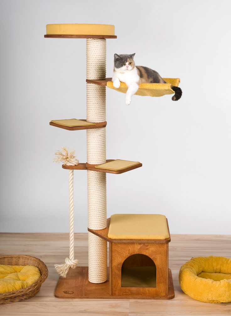32 best images about Cat Trees  Kratzbaum on Pinterest