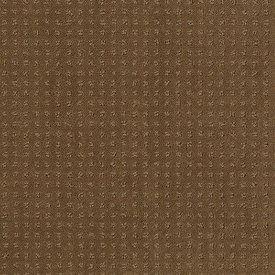 Color: 00702 Pebble Creek In Savannah - EA024 Shaw ANSO Nylon Carpet Georgia Carpet Industries