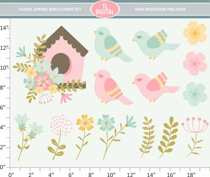 Spring Floral Clipart Set - Spring birds - High resolution PNG Files - 15 clipart designs by TLDigital on Etsy