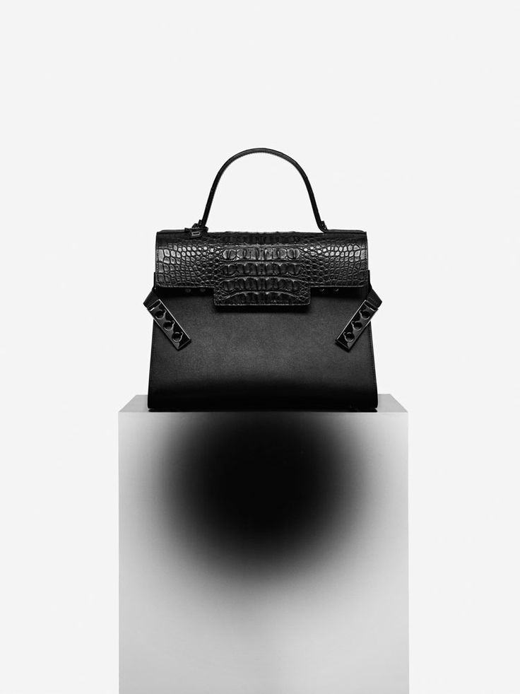foto de Pin by Jojo E on Delvaux Spring summer 2016 Bag accessories Gorgeous bags