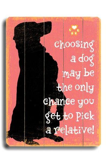 Choosing a Dog on HauteLook