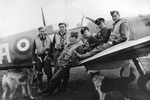Norwegian pilots of the No. 331 Squadron, Royal Air Force posing with a Supermarine Spitfire at the North Weald Airfield.