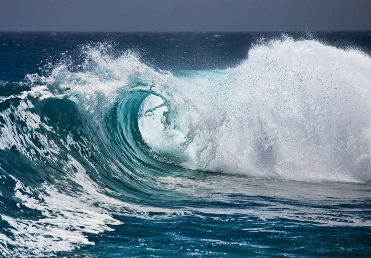 Dalga, okyanus, su, sprey, köpük vektör