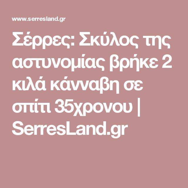 Σέρρες: Σκύλος της αστυνομίας βρήκε 2 κιλά κάνναβη σε σπίτι 35χρονου | SerresLand.gr
