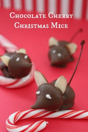 These Chocolate Cherry Christmas Mice are amazingly easy to make and look to cute on any cookie tray!
