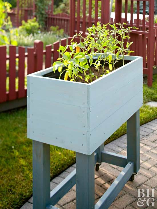 Save your back by gardening in your own DIY raised garden. This raised-bed garden is deep enough for large plants such as tomatoes and ornamental peppers. Follow our step-by-step guide to roll your way to happy portable garden. #gardening #raisedgarden #raisedbed