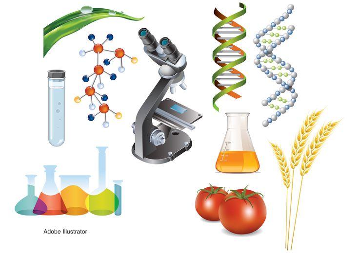 Agri-Scientific Publication Illustration Series