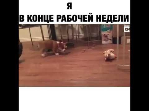 Я в конце рабочей недели)))