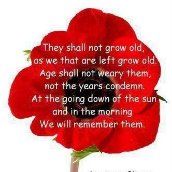 Remembrance day, when I was a kid, the veterans used to sell poppies, I never realized the significance of it till now.