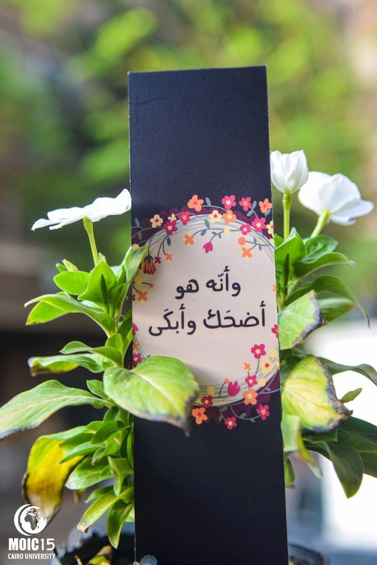 bookmark by MOIC organization, just a reminder for me though لأن الله هو القادر على كل شئ و ان كنت لا تدري فانظر الى من تلجأ عندما لا تجد ملجأ