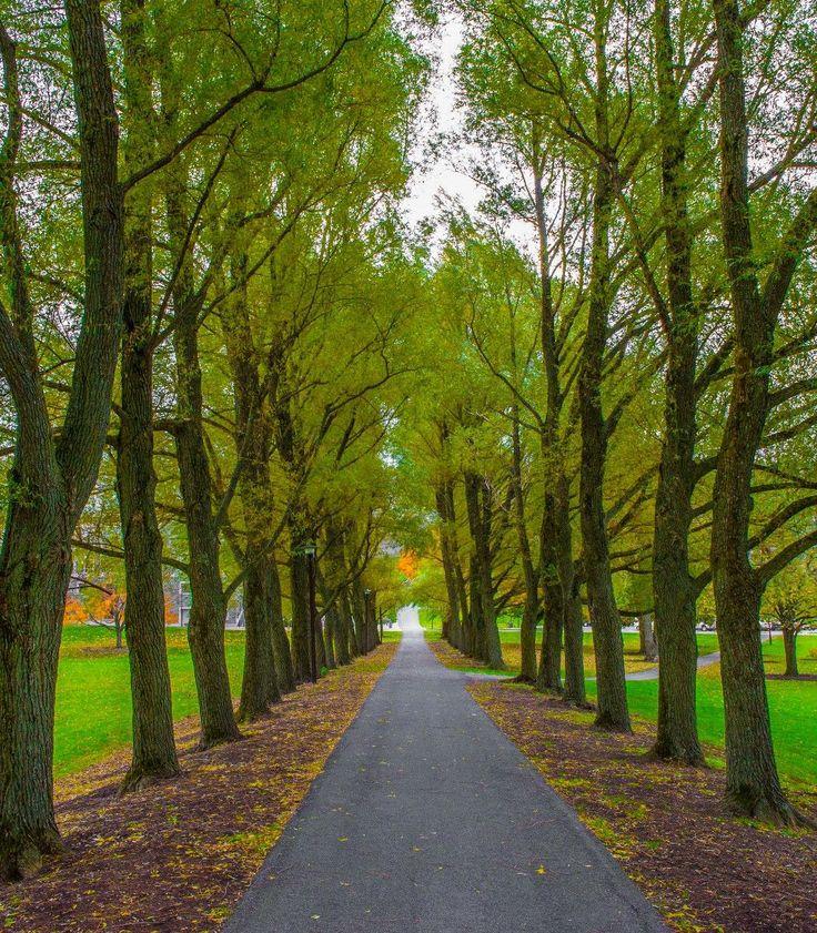 Colgate University, New York