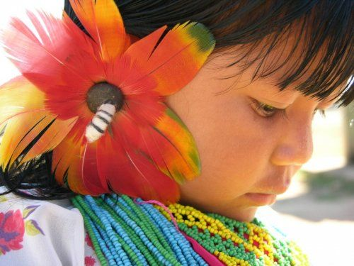 """Arara do Aripuanã, também chamado de Arara do Rio Branco, é um povo indígena brasileiro. Receberam o nome """"arara"""" porque utilizam uma pena desta ave na cabeça. Seu território demarcado tem a extensão de 144.842.474 hectares.  A tribo Arara do Aripuanã se localiza ao norte do Mato Grosso, à margem esquerda do rio Aripuãna.  No ano de 1994 sua população estimada era de 150 pessoas.  Sua língua é a Tupi-Arara, pertencente ao tronco linguístico Tupi."""