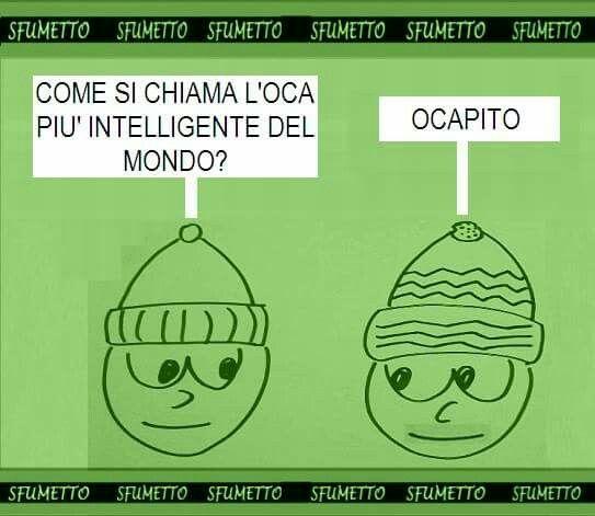 #Barzelletta sull'#oca #intelligente #vignetta #battuta #divertente #ridere #umorismo