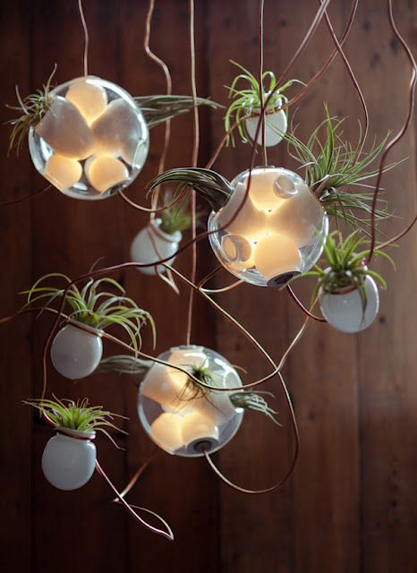 The 38 Series by Bocci is part terrarium, part chandelier, and hangs from the ceiling by stiff copper tubing. If you're in Milan for Salone this month, you can see it in Rossana Orlandi's famous courtyard.