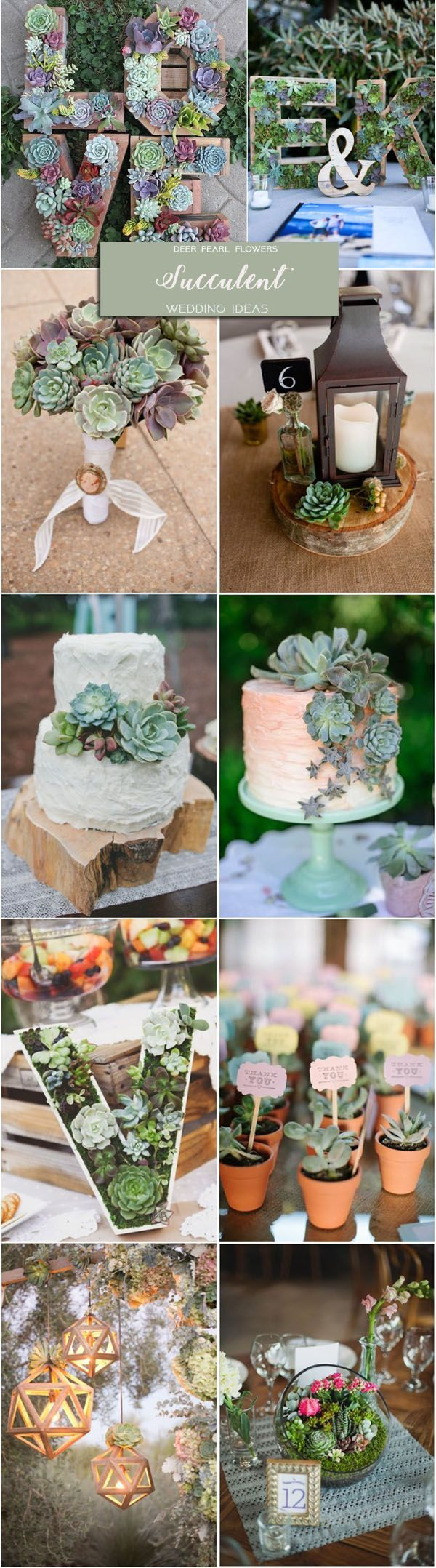 Rustic green garden wedding ideas - succulent wedding theme decor ideas / http://www.deerpearlflowers.com/rustic-wedding-themes-ideas-part-2/2/