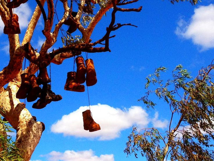 Iron ore miners celebrate their last day of working in the harsh Western Australian desert by hanging their old boots from a tree