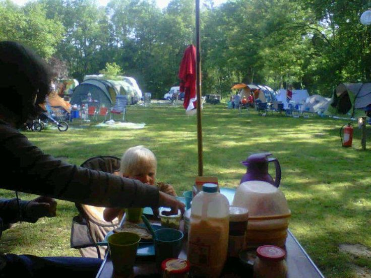 Waterloopbos in Kraggenburg, Flevoland  Unieke combinatie van natuur en techniek in het Waterloopbos. Tijdens Uit-jeTent kun je hier kamperen (ook voor campers). Tijdens Uit-jeTent kun voordelig kamperen en zijn er heel veel activiteiten.