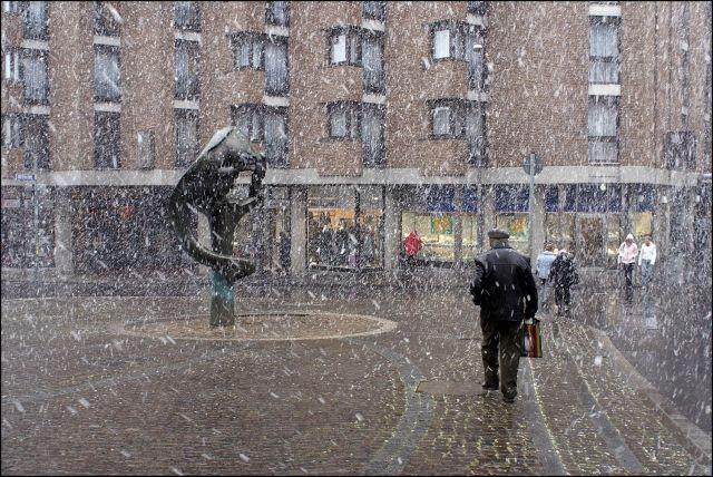 Photo : C'est le printemps,  Actualité, mouvement, Allemagne, Aachen. Toutes les photos de Raymond WIDAWSKI sur L'Internaute