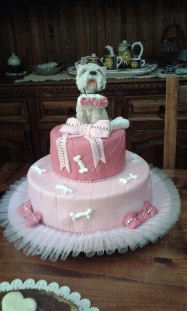 Torta cani