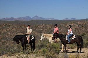 Madi-Madi Karoo Safari Lodge - Horse safaris