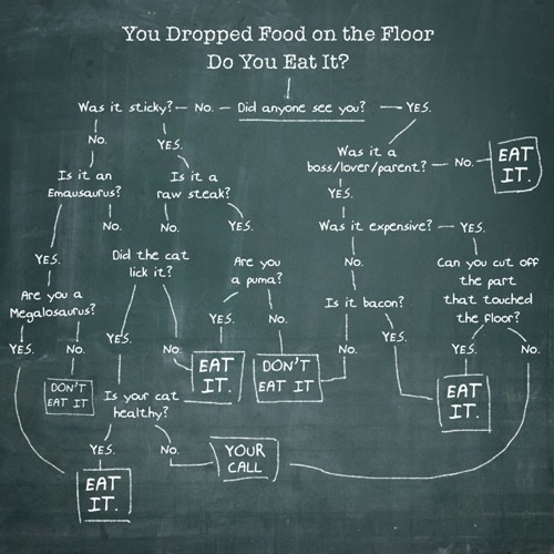 The science behind eating off the floor. =))Charts, Floors, Guide To, Funny, Food Boards, Drop Food, New Products, Food Art, The Rules