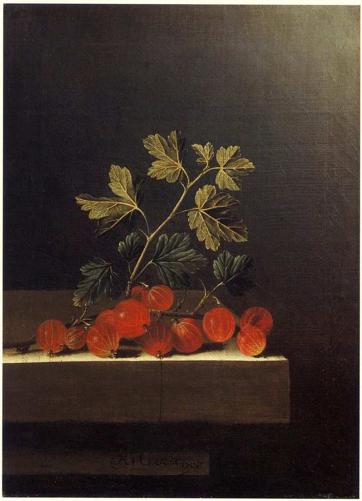 Adriaen Coorte Gooseberries On A Table 1701 Oil On Canvas Cleveland Museum Of Art Cleveland