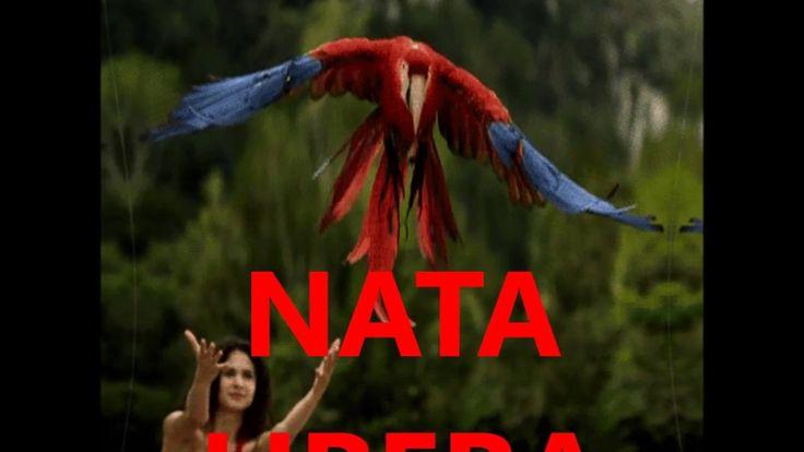 NATA LIBERA  Viola Gidjary