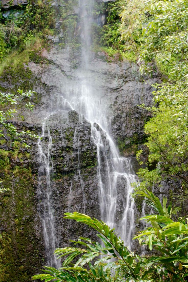 Road to Hana waterfall - Maui (With images) | Road to hana ...