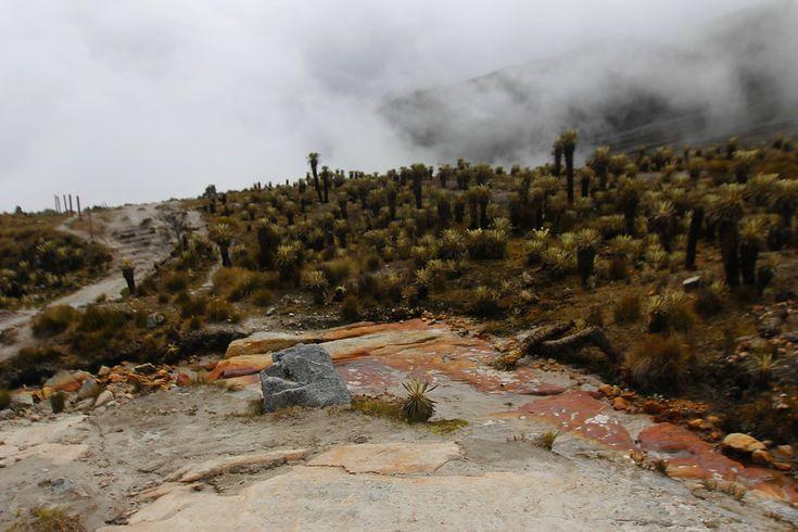 Expertos aseguran que los glaciares colombianos desaparecerán en dos décadas. El Nevado del Cocuy (fotos) es el único que duraría un poco más. Fotos Colprensa.