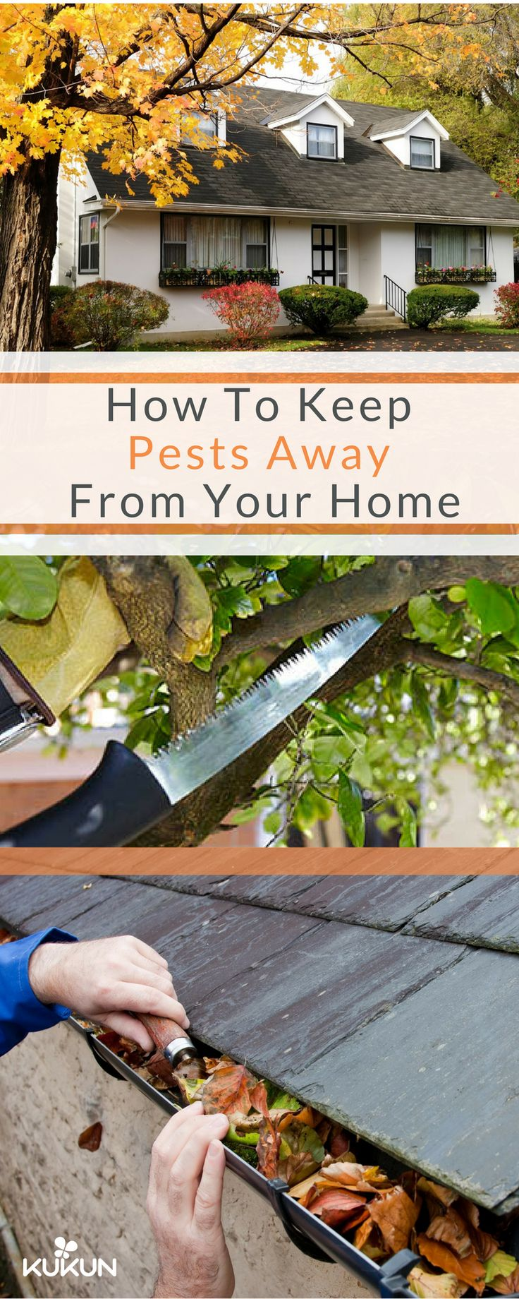 Pests are best dealt with pre-emptively, knowing what causes them and taking care of it will help you control this problem in the future and maybe even take care of it completely, so read our in-depth guide on pest control! [Pest Control, Cleaning Gutters, How To Keep Pests Away, How To Keep Pest Out Of House, Pest Control Tips, Cutting Off Branches, Trimming Shrubs, Garden Planning]