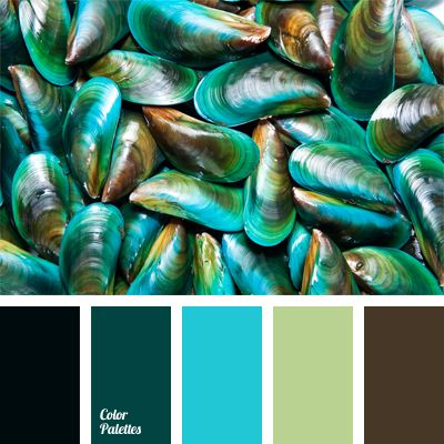 Combination of shades of turquoise color, chocolate and pale olive is neutrally complemented with black. This color scheme can be used to design a spacious kitchen and it will look interesting in the bathroom.