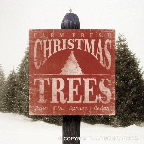CHRISTMAS TREES - Cafe Mount Wood Sign 12 x 12