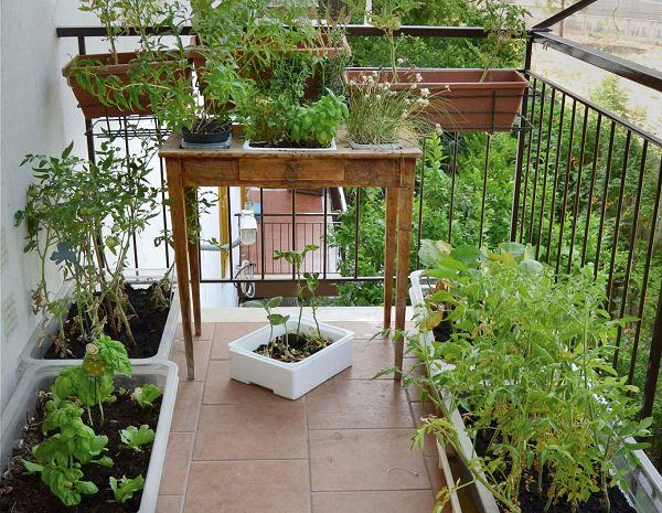 78 ideas about balcony herb gardens on pinterest for Balcony vertical garden ideas