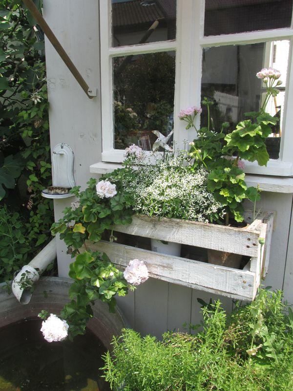 ber ideen zu blumenk bel auf pinterest pflanzenk bel g rtnern und stuhl bertopf. Black Bedroom Furniture Sets. Home Design Ideas