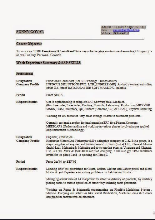 how to make a professional cv sample template example of