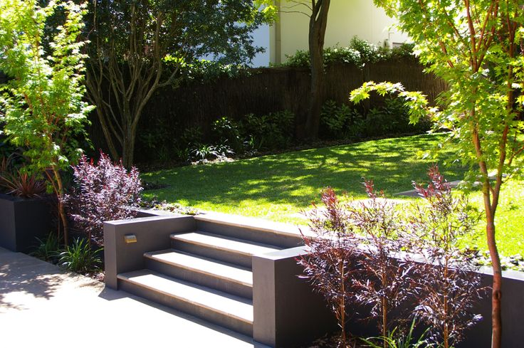 Steps in rendered retaining wall pool landscaping for Rendered garden wall designs