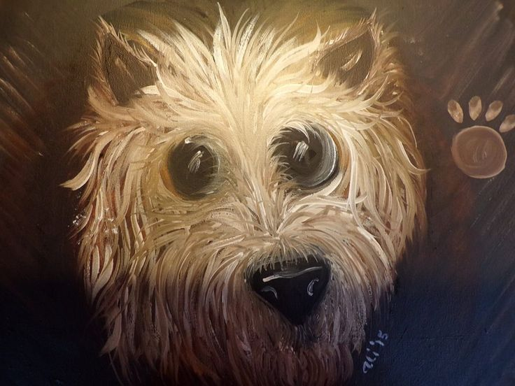 Puppy pawprints Cairn Terrier Oil on canvas 30cm x 40cm £25.00 + £3.50 P&P
