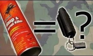The Truth About Using Wasp Spray Versus Pepper Spray For Self Defense.  http://www.thegoodsurvivalist.com/the-truth-about-using-wasp-spray-versus-pepper-spray-for-self-defense/  #thegoodsurvivalist