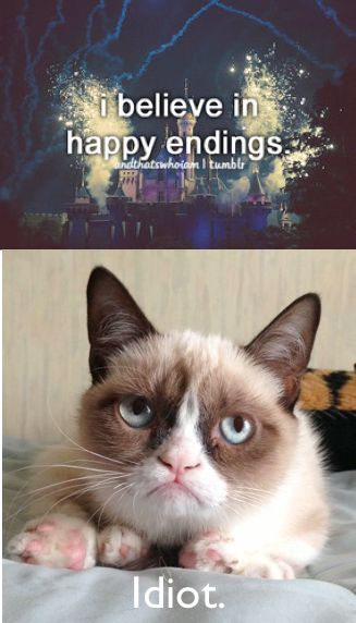 Grumpy cat thinks you're stupid for believing life is a fairytale.