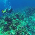 Nggak Cuma Mahluk Aneh, Diving di Laut Indonesia Bisa Lihat Gunung Api Lho!