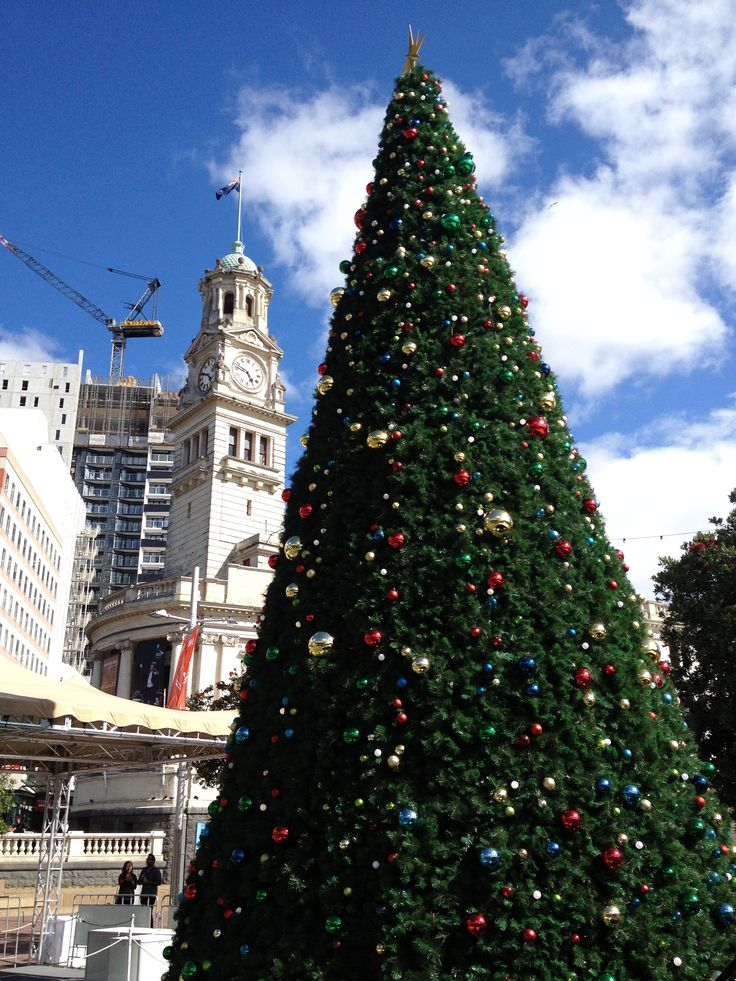 Giant Christmas tree at the Aotea square plaza with town hall at the background