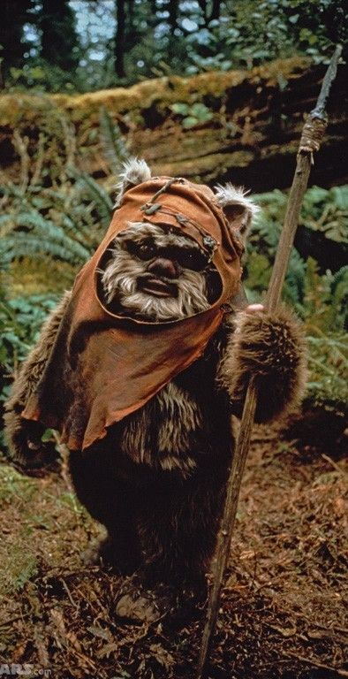 I Love Ewoks. Just want to snuggle them to pieces!
