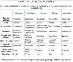 Biología y Geología de 1º Bachillerato: Los cinco reinos de la ...