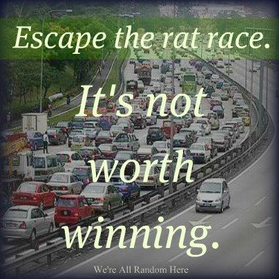 """We moved away from big city life and escaped from the rat race...and we  """"won"""" wit a simplified life where we area able to live within our means. People can also escape by setting different priorities and getting out of the """"busy-ness"""" pattern."""