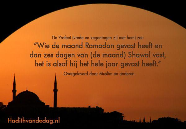 Citaten Quran Lazada : Beste ideeën over wijze woorden op pinterest