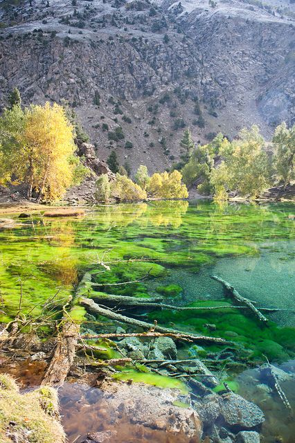 The green lakes of Naltar Valley in Karakorum Mountains, Pakistan Beautiful,  beautiful Naltar Valley - the glacial lakes so incredibly clear!