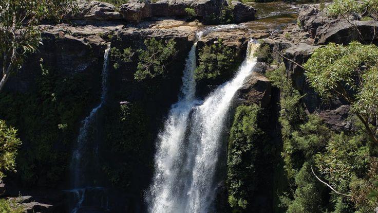 Carrington falls, Budderoo National Park. Photo: Andy Richards